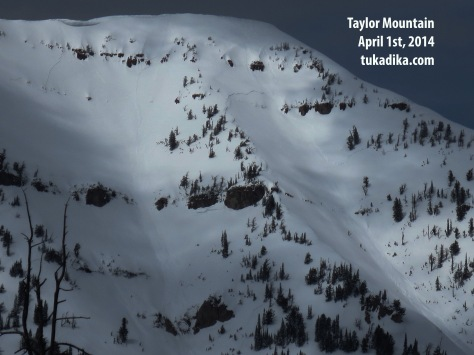 Taylor Mountain Avalanches