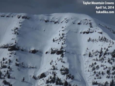 taylor mountain crowns