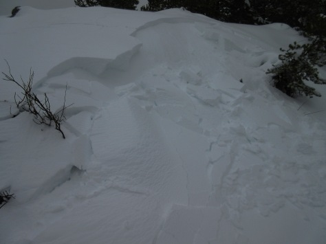 Naturally triggered avalanche next to the main trail out of Bradley-Taggart Parking Area.  GTNP: 11.22.14