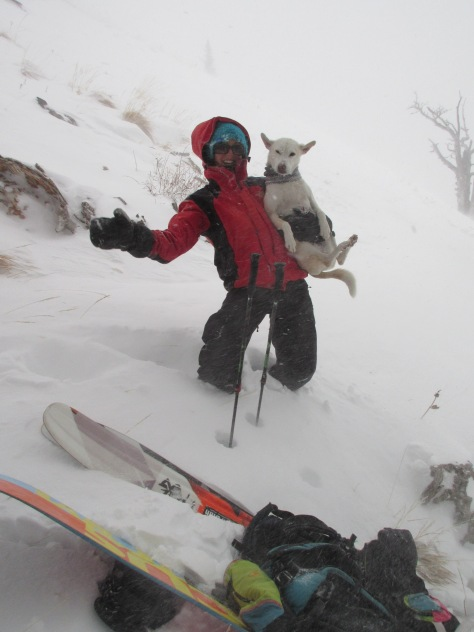 Dani and Maestra testing the wind speed on Mt. Glory.  Maestra's ears were registering a Beaufort Force 6 breeze.