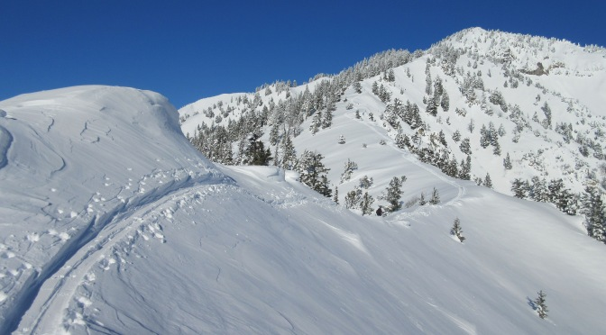 WYDAHO SNOW: FERRY POINT 9141: SW RIDGE: 1.1.15