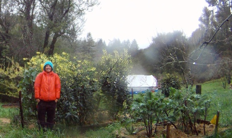 Gardening is fun.  It's too bad that affordable land is in such short supply.  Photo courtesy DDR Designs Permaculture