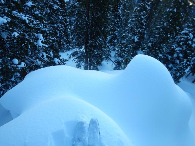 Wydaho Snow: 1.29.16: Darkness Saving Light